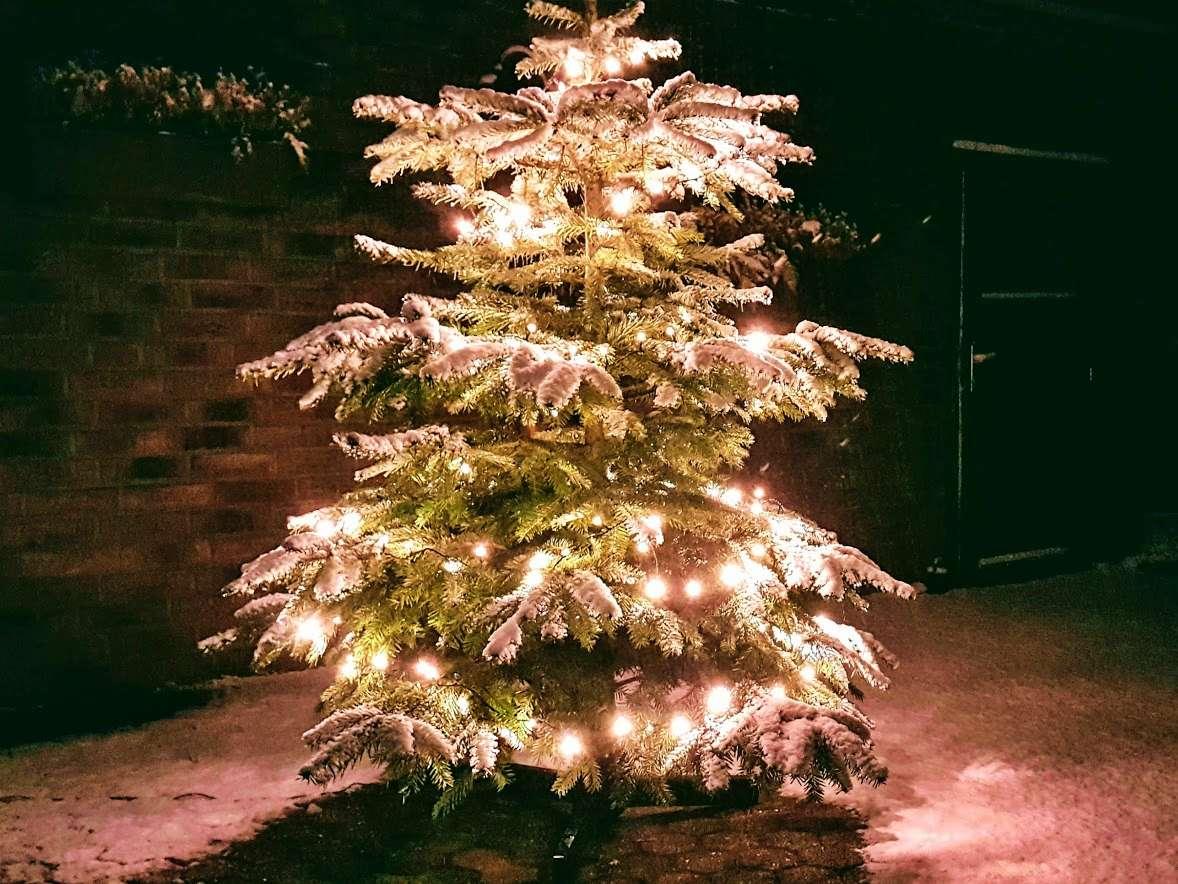 Weihnachtsbaumverkauf Trödel Oase Viersen Süchteln